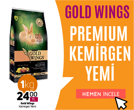 Gold Wings Premium Kemirgen Yemi